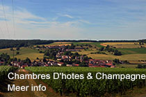 Chambres D'hotes & Champagne Douard - Champagne